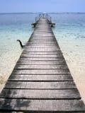 运行在透明的水旁边的码头 库存照片