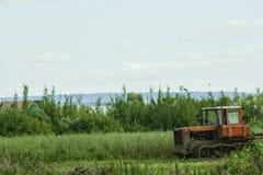运行在领域的拖拉机反对蓝天背景 库存图片