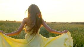 运行在麦田的黄色礼服的愉快的年轻美丽的妇女在日落夏天,自由健康幸福概念 影视素材
