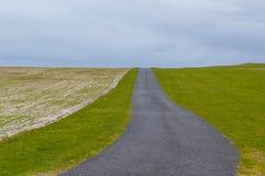运行在绿色牧场地之间的空的乡下路 免版税库存图片