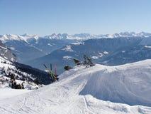 运行滑雪 免版税库存照片