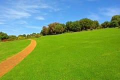 运行通过绿色草甸的石路 免版税库存图片
