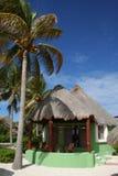 运货马车的车夫del绿色墨西哥palapa playa 免版税图库摄影