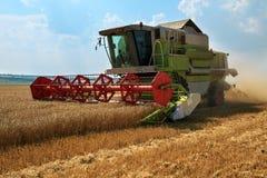 运转在一块金黄成熟麦田的联合收割机在一个明亮的夏日反对与云彩的蓝天 五谷尘土在天空中 免版税库存照片