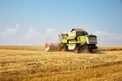 运转在一块金黄成熟麦田的联合收割机在一个明亮的夏日反对与云彩的蓝天 五谷尘土在天空中 免版税图库摄影