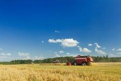 运转在燕麦农田的几个联合收割机在蓝天下在热的夏日期间 图库摄影