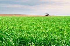 运转在领域的唯一拖拉机 绿草和年轻麦子 免版税库存照片