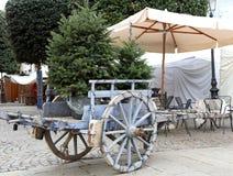 运载一棵圣诞树的推车在12月 图库摄影