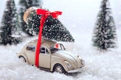 运载一棵圣诞树的汽车在积雪的微型常青森林里 库存照片