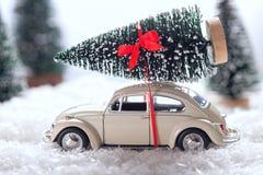 运载一棵圣诞树的汽车在积雪的微型常青森林里 免版税图库摄影