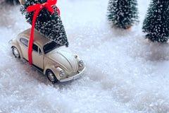 运载一棵圣诞树的汽车在积雪的微型常青森林里 免版税库存照片