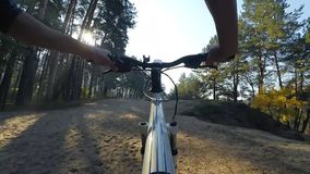 运载一辆自行车的人在一个美丽的森林里 股票录像