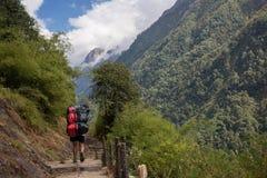 运载两在安纳布尔纳峰营地,尼泊尔的搬运工重的行李袋 库存图片