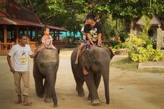 运载儿童大象 库存图片