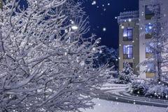 运载圣诞节克劳斯礼品例证晚上圣诞老人向量 自然和建筑学背景 免版税库存图片