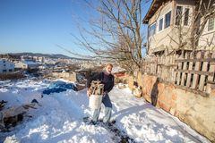 运载塑料桶的老土耳其人切好的火森林 免版税库存图片