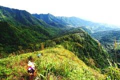 运载大行李、行李、伙食、小包、包裹或者手提箱的持票人人对高山有山景,森林和 免版税库存照片