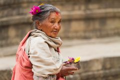 运载宗教奉献物的尼泊尔妇女 库存照片