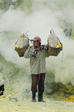 运载的火山口ijen里面硫磺工作者 免版税库存图片