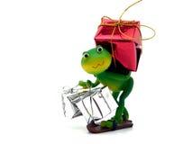 运载的蛙礼品 免版税库存图片