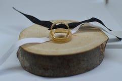 运载联盟垂直与被切开的木头金戒指  背景画笔关闭查出摄影白色的工作室牙 婚礼,链接,婚姻 屏幕保护程序背景 库存照片
