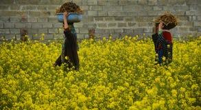 运载肥料的女孩 免版税库存照片