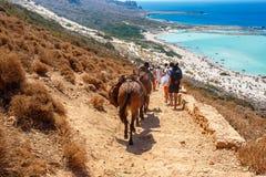 运载袋子和去Balos盐水湖的人们和驴 Cret 库存图片