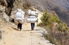 运载重的大袋,喜马拉雅山,珠穆琅玛地区的两位sherpa搬运工 免版税库存照片