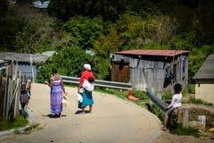 运载鸡的妇女在一个乡在Knysna 库存图片