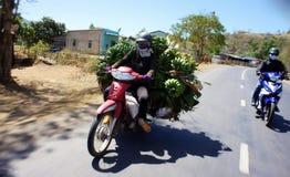 运输乘摩托车 免版税库存图片