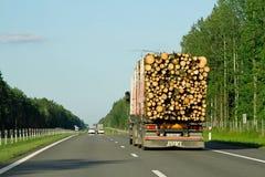 运输在高速公路白俄罗斯的大卡车木头 免版税库存图片