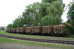 运输无盖货车木头 库存照片