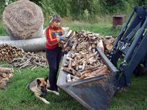 运输木柴3 库存照片