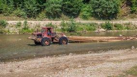 运输沿河Valea Vaserului的拖拉机被切开的木头 免版税图库摄影