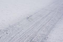运输的轨道通过冰 免版税库存照片