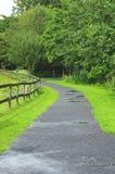 运输路线在公园 库存图片