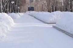 运输路线在冬天公园 免版税库存照片