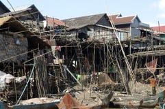 近柬埔寨湖收割树汁siem tonle 免版税库存照片