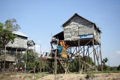 近柬埔寨湖收割树汁siem tonle 免版税图库摄影