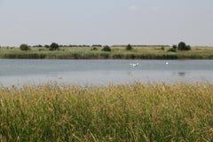 近湖由海 免版税库存图片