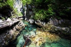 近Vintgar峡谷和木道路流血,斯洛文尼亚 免版税库存照片
