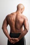 返回肌肉 免版税库存图片