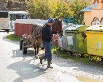 这一个人带领被利用的马的辔一个推车在麸皮城市的郊区在罗马尼亚 图库摄影