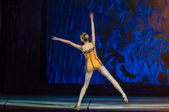 这个永恒芭蕾传说 库存图片
