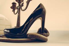 这双鞋子有麻烦 蛇卫兵在大烛台的时尚鞋子 在高跟鞋鞋子和烛台附近被包裹的蛇 免版税库存图片