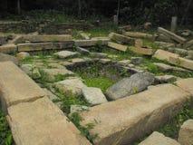 这是安帕拉图象斯里兰卡美好的地方  库存照片