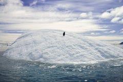 这是我的冰山 库存照片