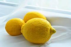 这是所有关于柠檬的颜色 免版税库存图片