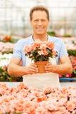这朵花是你的! 免版税库存图片
