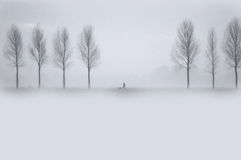 这里冬天 库存照片